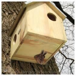 constructeur maison ecureuil